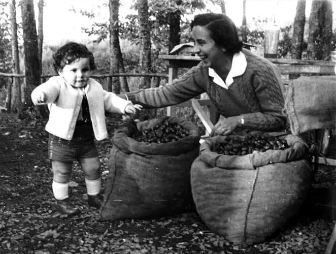 Bambini in gita a Soriano nel Cimino (VT) per la festa delle castagne (Circolo aziendale INA, 1958)